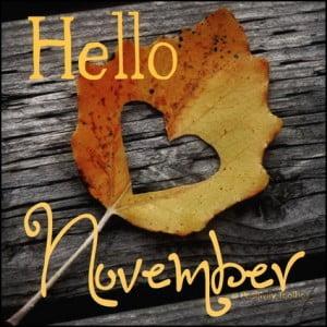 Hello-November-update