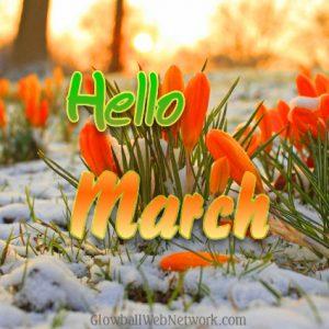 Hello-March-update-2